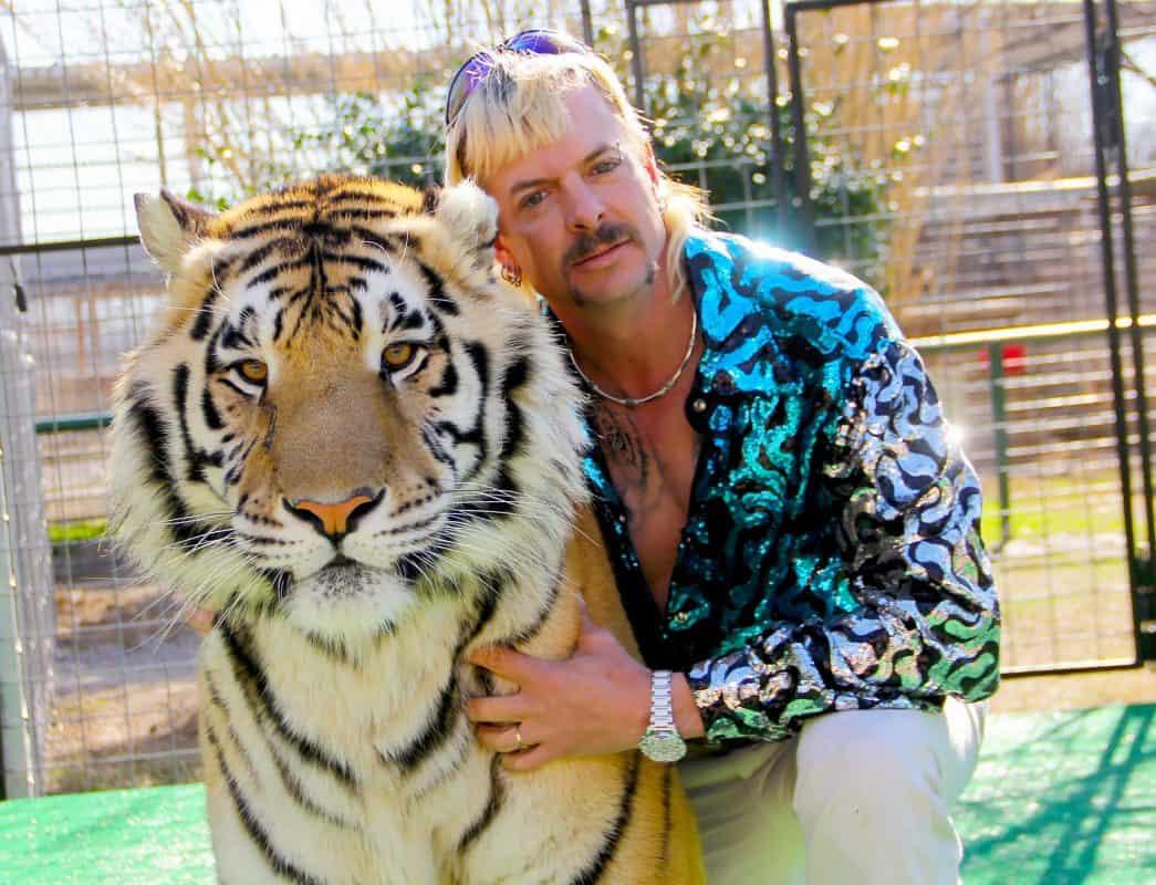 Tiger King IMG_0085JEPA_R