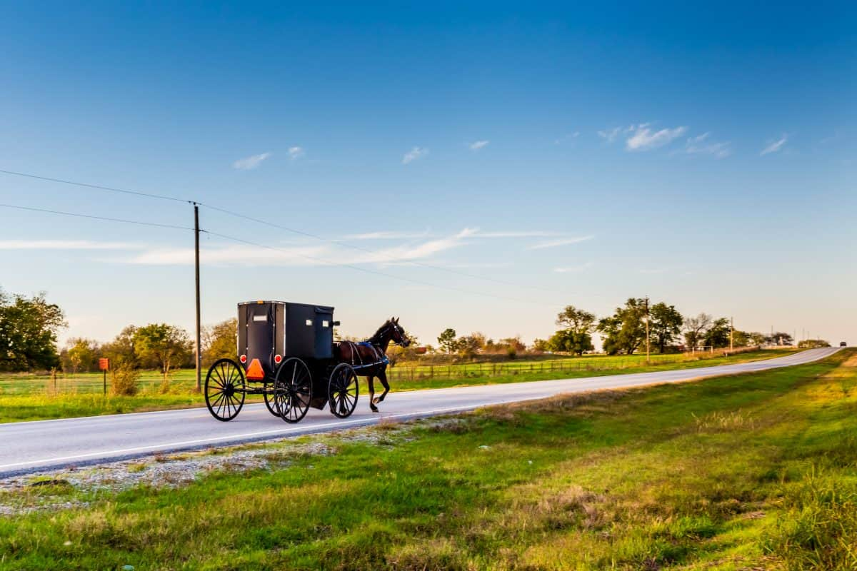 Horse and Buggy on Highway in Oklahoma Amish Country