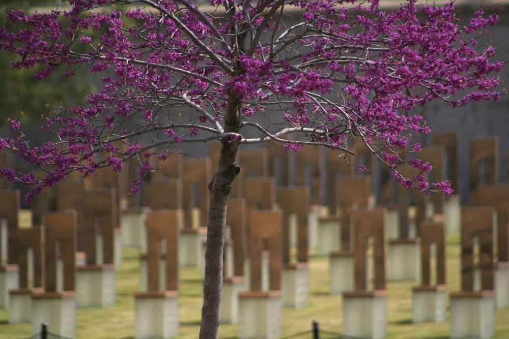 USA - Oklahoma - Oklahoma City - Oklahoma memorial.