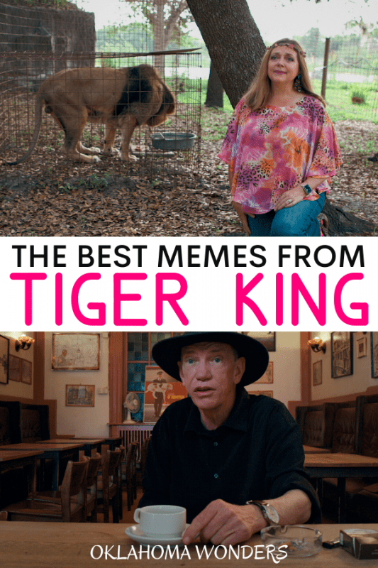 The Best Memes from Tiger King_ Murder, Mayhem and Madness