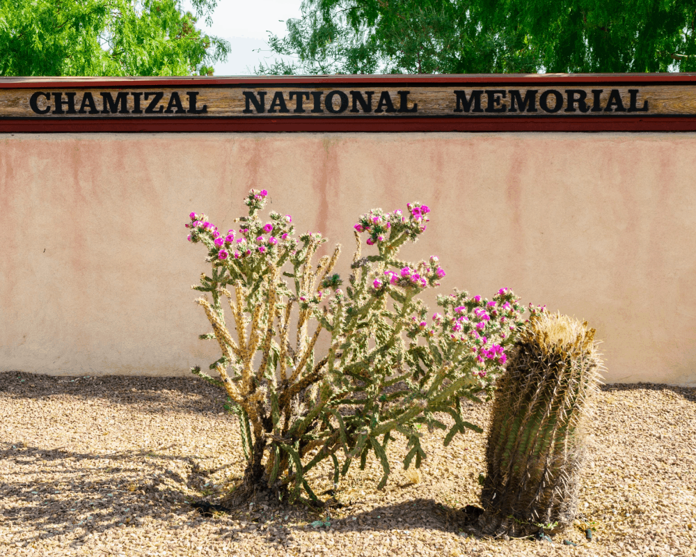 USA - Texas - Chamizal National Monument