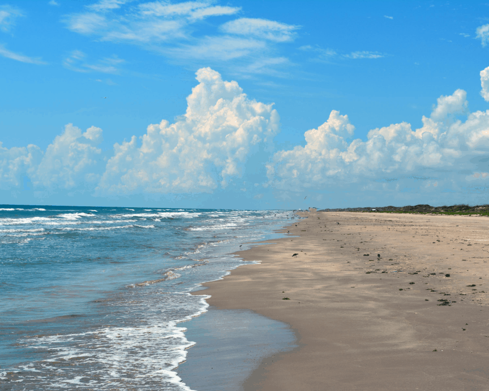 USA - Texas - Padre Island National Seashore