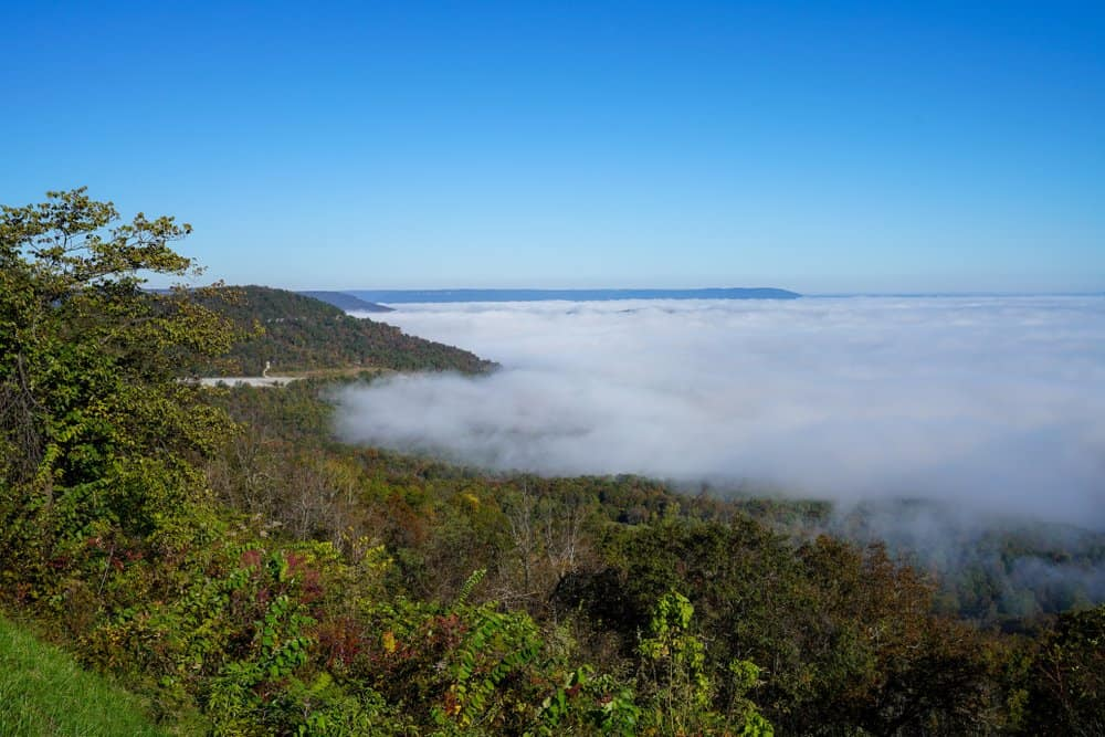 USA - Arkansas - Overlooking the grand canyon of Arkansas along scenic byway 7 during a foggy autumn day