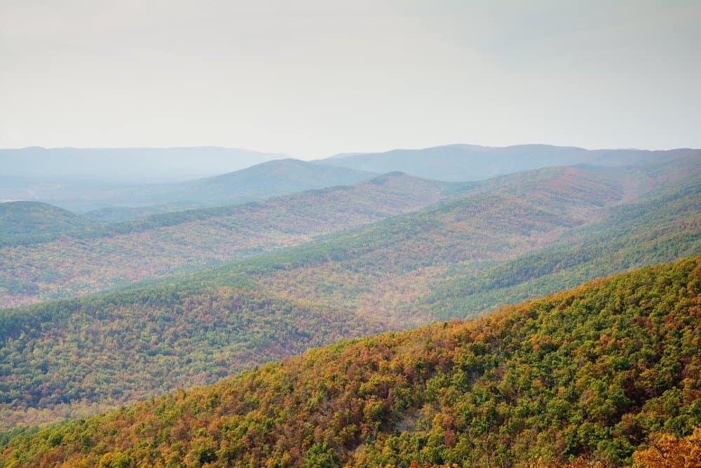 USA - Arkansas - View across mountain ridges in Ouachita National Forest