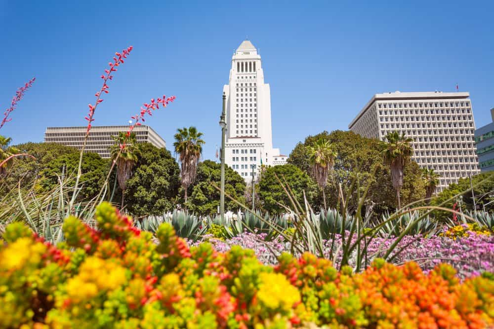 California - Town hall view with flowers in LA downtown, USA
