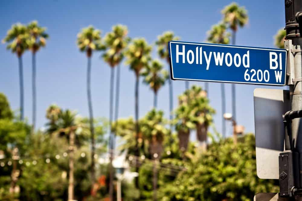 California - Hollywood boulevard sign, with palm trees in the background
