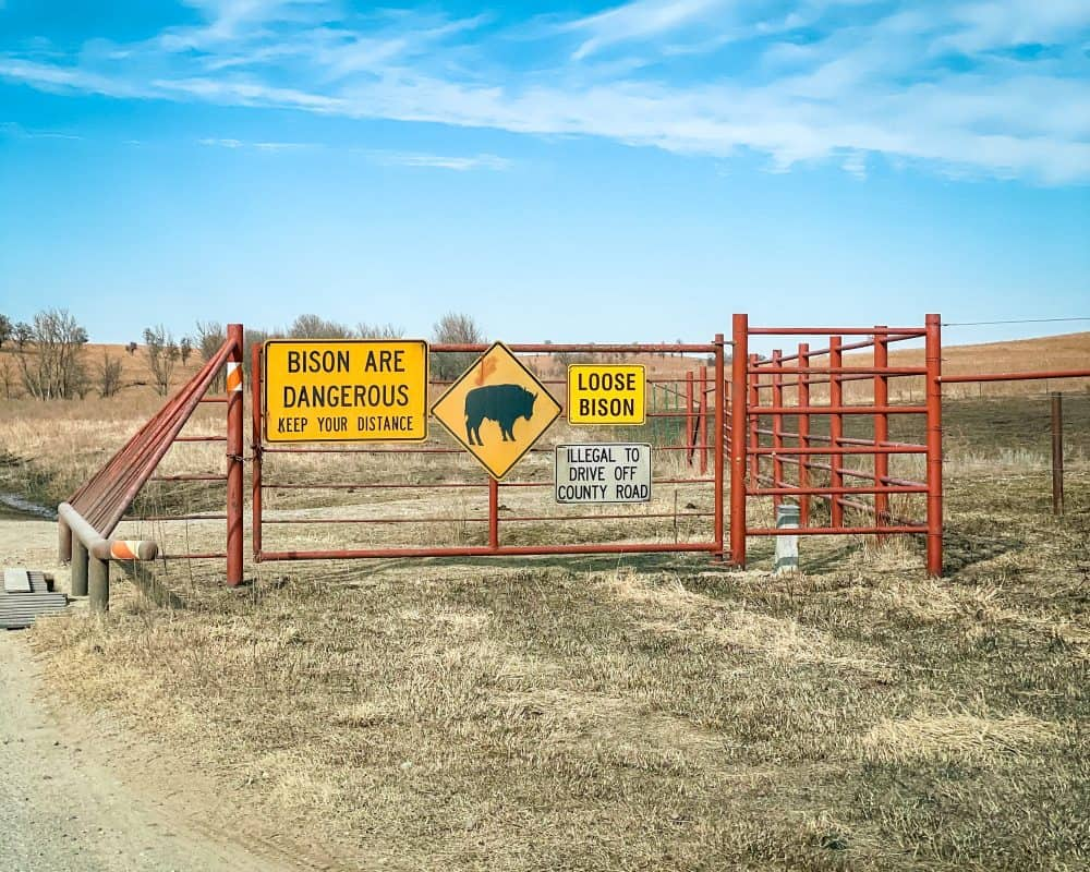 "Oklahoma - Pawhuska - Tallgrass Prairie Preserve - Sign ""Bison are Dangerous"" ""Loose Bison"""