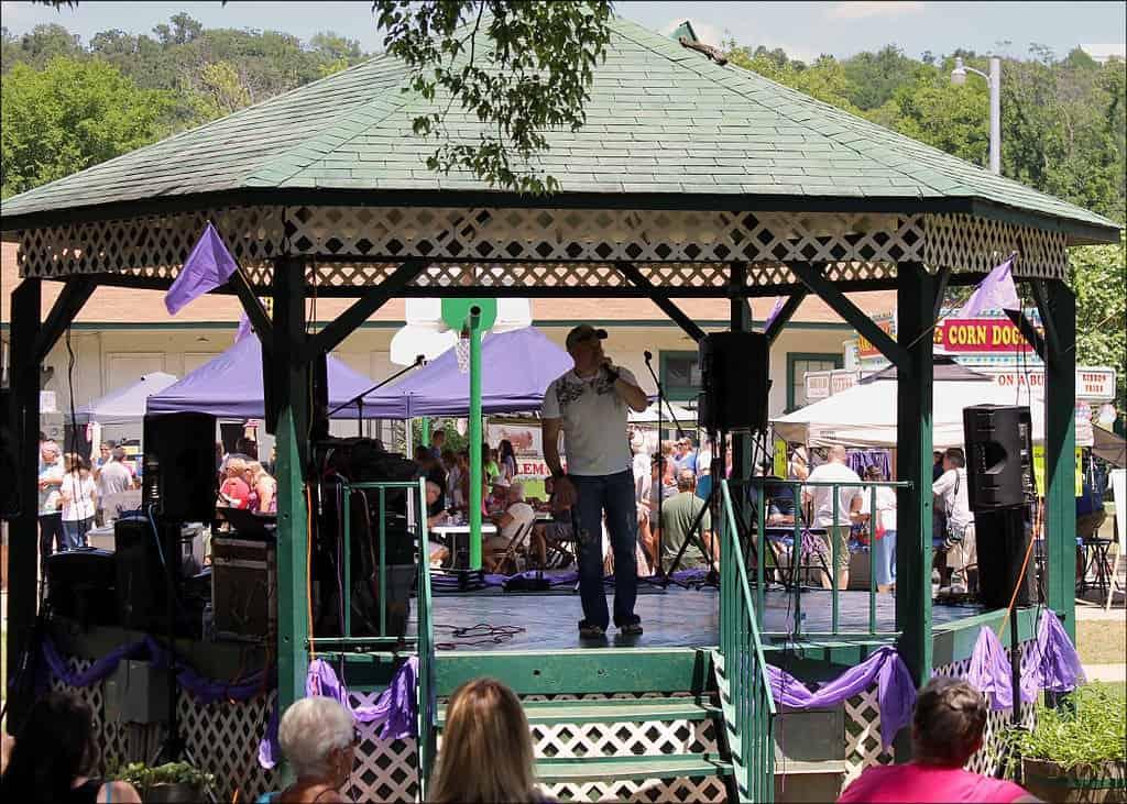 Arkansas - Altus - Grape Festival