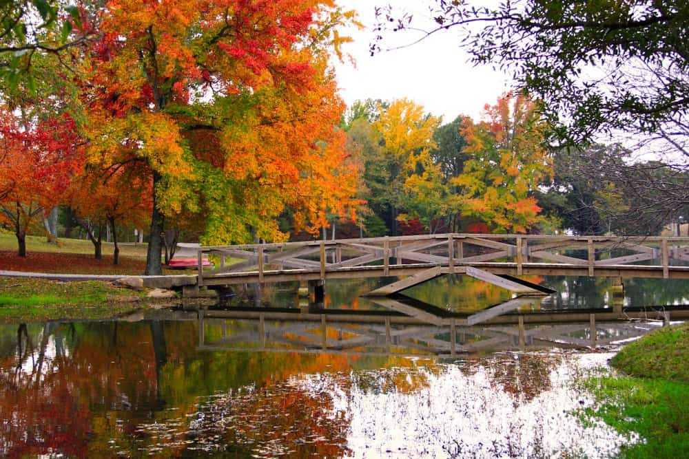 Arkansas - Batesville - Pond with a Bridge in the Fall in Arkansas