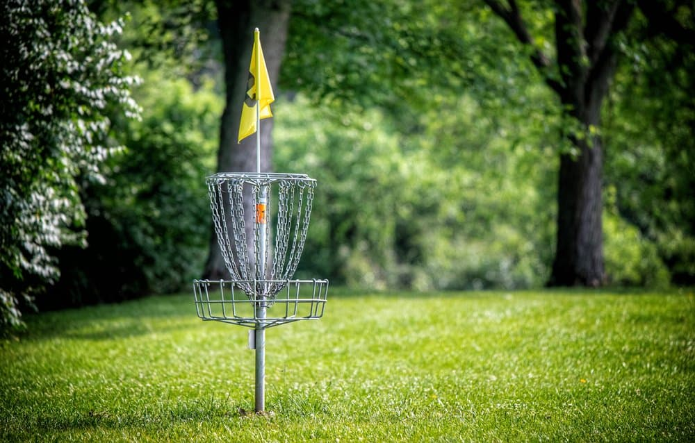 Arkansas - Mountain View - A disc golf hole on green grass with the woods in background.