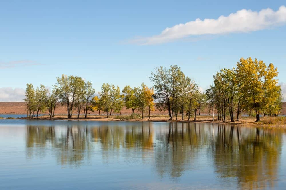 Colorado - Littleton - Fall trees reflecting in the lake in the morning light