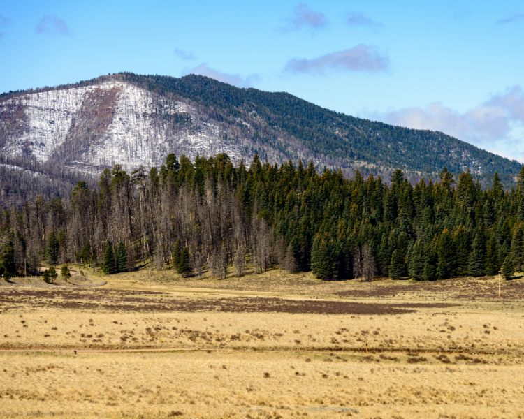 New Mexico - New Mexico National Parks - Valles Caldera National Preserve