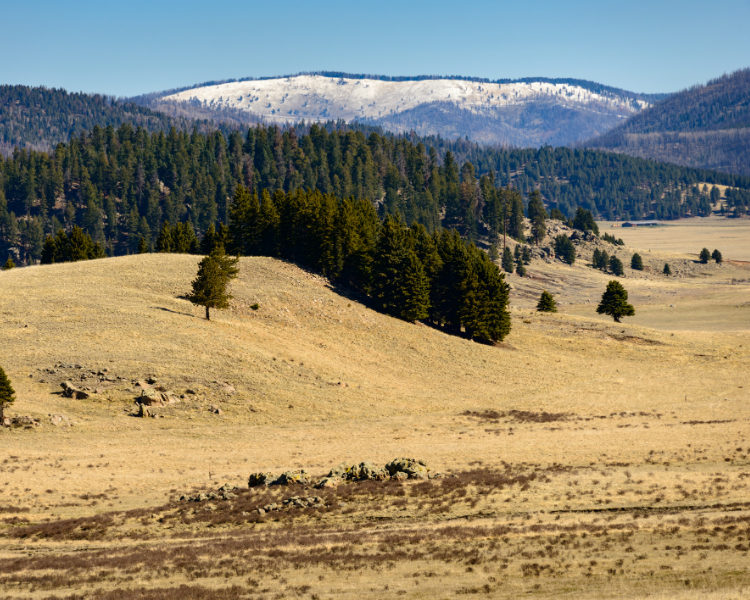 New Mexico - New Mexico National Parks - Valles Caldera National Preserve