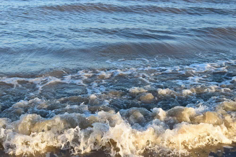 Texas - Stewart Beach in Galveston, Texas