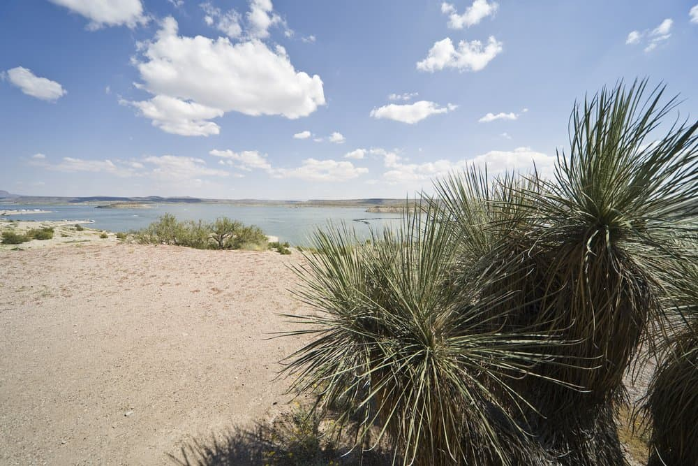 New Mexico - Elephant Butte Lake State Park in New Mexico, USA