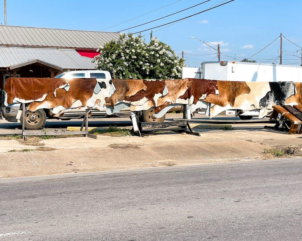 Texas - Luling - Cow Hides for Sale