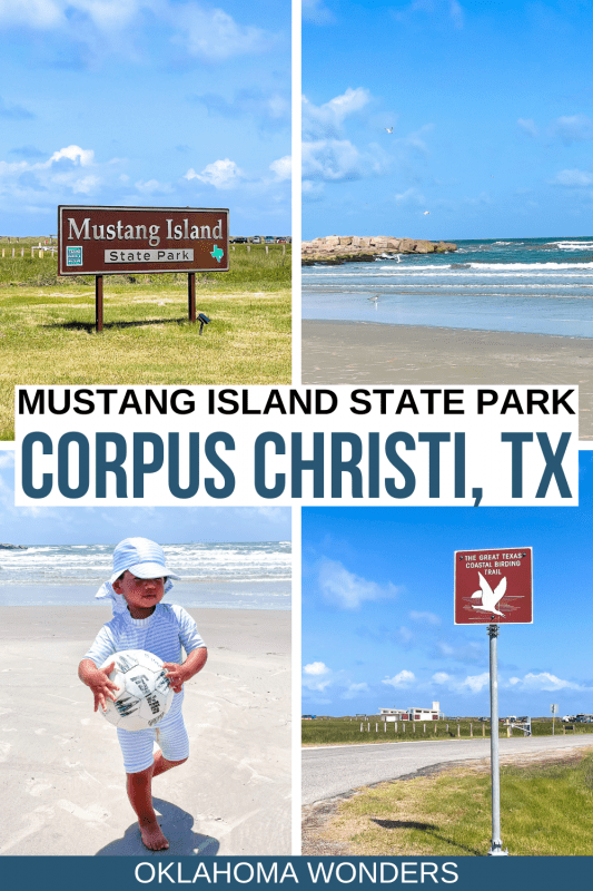 Best Things to Do in Mustang Island State Park in Texas + Travel Tips!-2