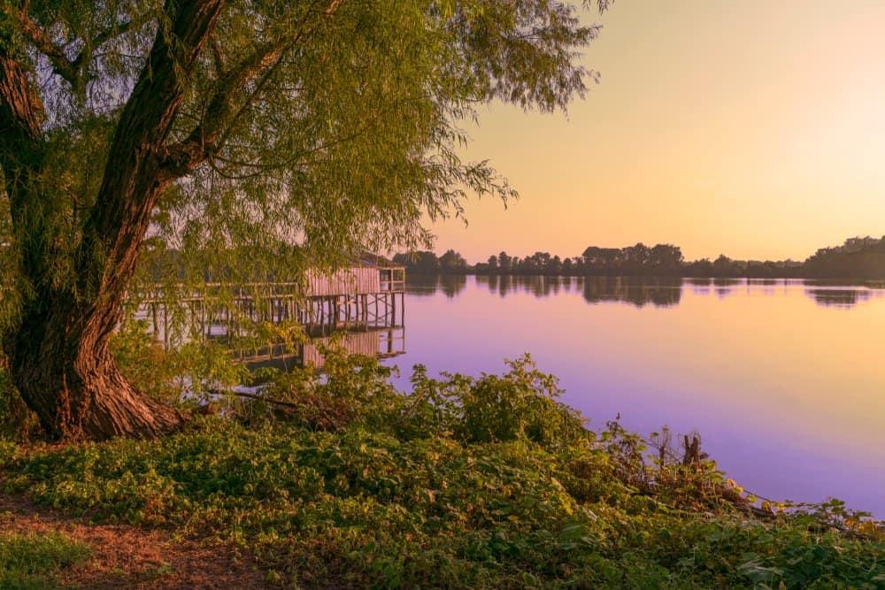 Lansdcape,Of,Horseshoe,Lake,In,Arkansas