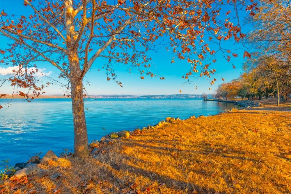 Lake,Dardanelle