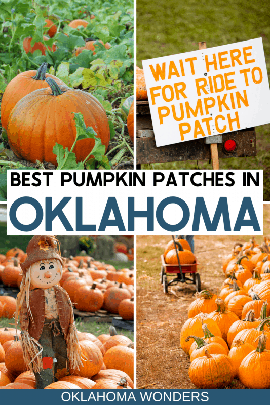 Pumpkin Patches in Oklahoma - Pumpkin Farms in Oklahoma - Hayrides in Oklahoma - Corn Mazes in Oklahoma - Hay Mazes in Oklahoma